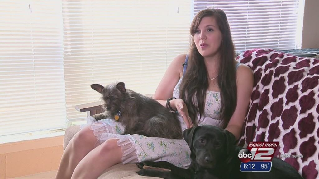 emotional support for service dog owner