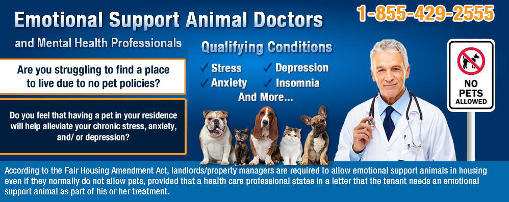 Emotional Support Animal Letter | Online Emotional Support Animal ...